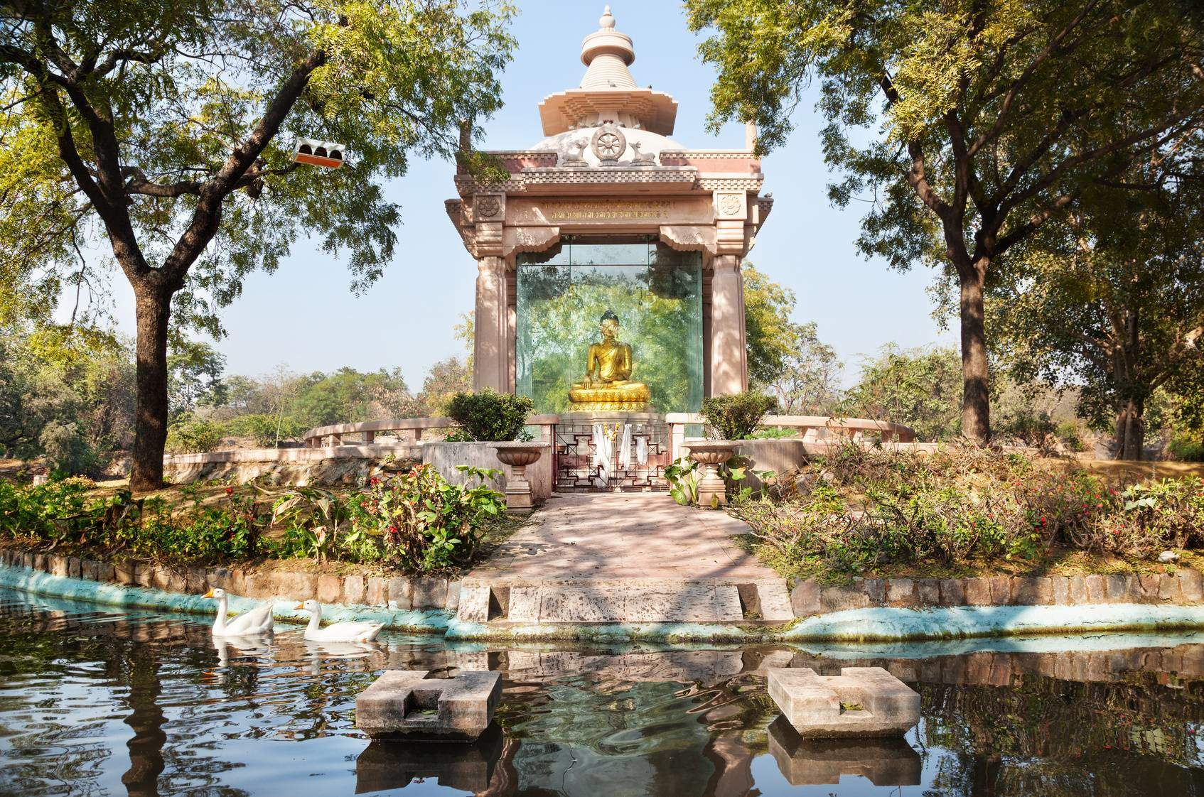 Budhha Garden Delhi