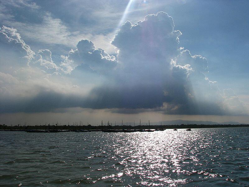 Pulicat Lake Andhra Pradesh