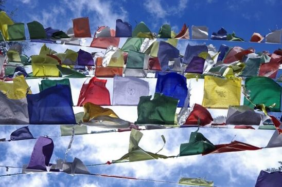 Flags Near Tibetan Stupas popular in India,