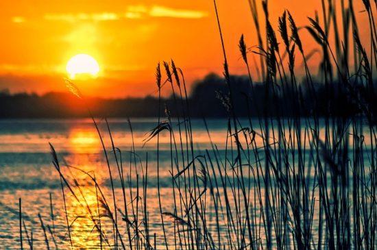 Najafgarh Lake in Delhi