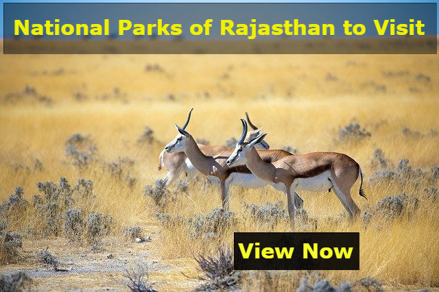 National Parks of Rajasthan to Visit