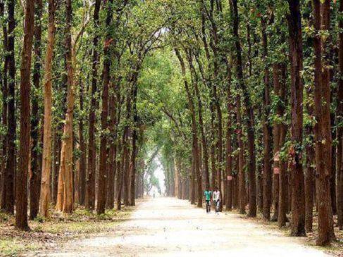 Kusumhi Vinod Van park Gorakhpur, places of interest in Gorakhpur Parks and water parks